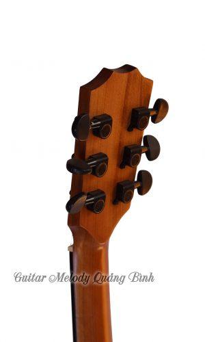 Guitar Quảng Bình - Guitar Acoustic AV1400