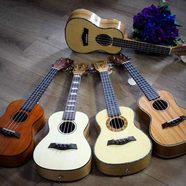 Ukulele Concert Quảng Bình