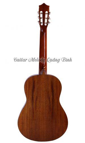 Guitar Quảng Bình - Guitar Classic C750J