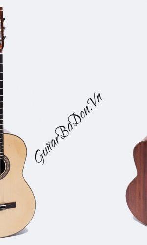 Guitar Ba đờn C250
