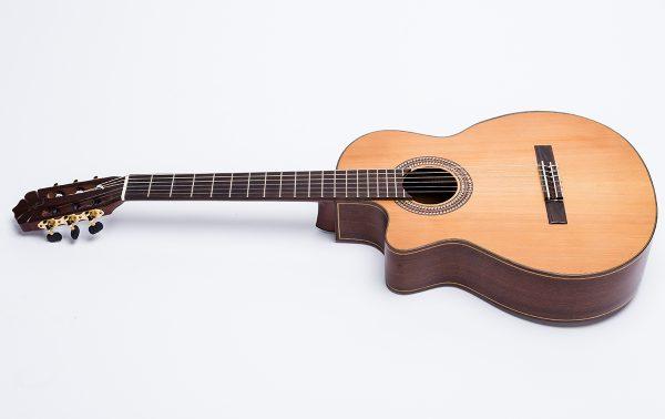 Guitar Ba đờn C450J