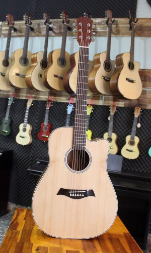 Guitar Quảng Bình - Guitar Acoustic A0058LT2