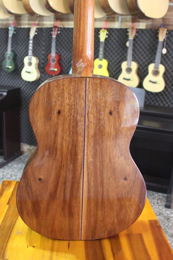 Guitar Quảng Bình - Guitar Classic C0531LT